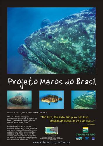 projeto_meros.jpg