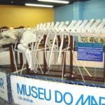 museu-do-mar