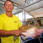 Feira do peixe Acre