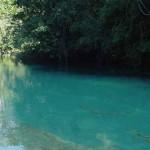 Parque Estadual Várzeas do Ivinhema