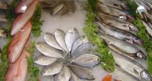 Pescado peixe propriedades nutricionais